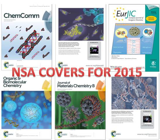 nsa_covers_2015_sm