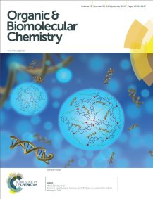 obc2015_dna_ioana_cover_sm